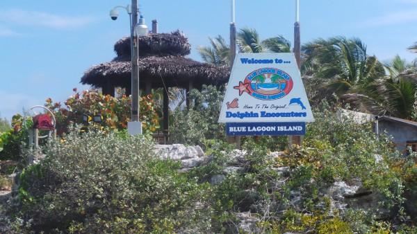 Blue Lagoon Bahamas Divas On Destinations
